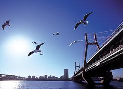 写真:神戸ベイシェラトンホテル&タワーズ ジム
